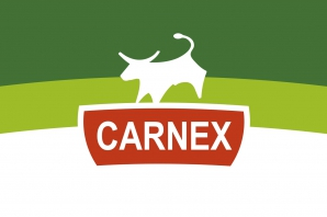carnex-redesign-logotyp